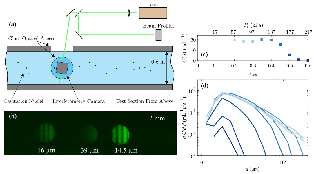 Measurement of nuclei seeding in hydrodynamic test facilities