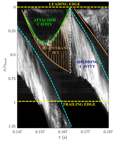 Cloud Cavitation Behavior on a Hydrofoil Due to Fluid-Structure Interaction