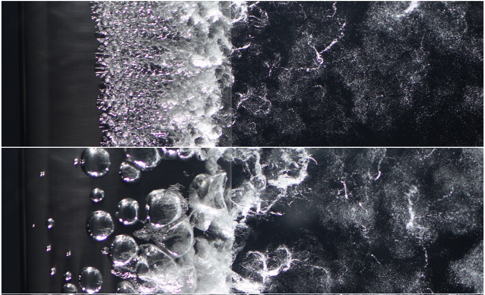 Microbubble Disperse Flow about a Lifting Surface