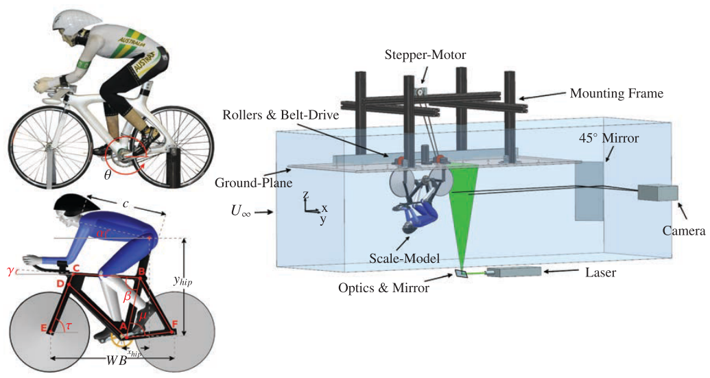A comparison of the wake structures of scale and full-scale pedalling cycling models