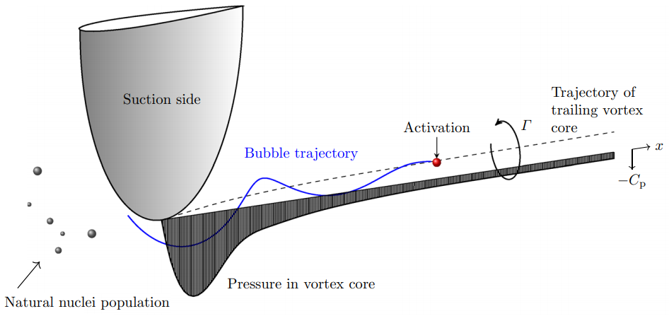 Statistical aspects of tip vortex cavitation inception and desinence in a nuclei deplete flow